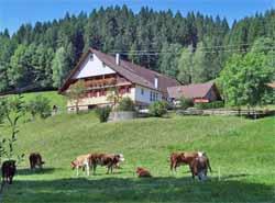 Ferienwohnungen in Nordschwarzwald