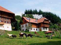 Bauernhof im Nordschwarzwald